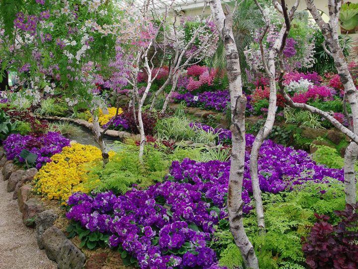 Conservatory at Fitzroy Gardens, Melbourne, Victoria, Australia