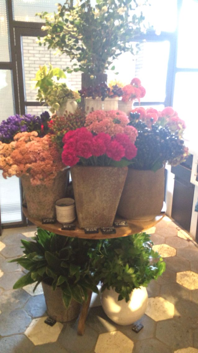 Beautiful flowers for shop interior