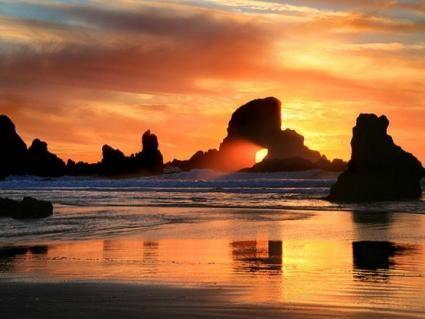 Google Image Result for http://www.crazywebsite.com/Website-Clipart-Pictures-Videos/Wildlife_Nature/Oregon_Coast_Sunset_Photograph_1MD.jpg