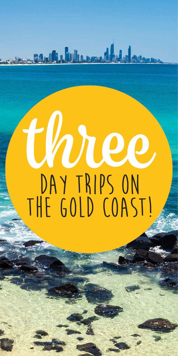 Inside Gold Coast has planned out 3 amazing day trips, just for you! We love the Gold Coast and we think you will too! Choose between the Gold Coast's stunning beaches, the Hinterland and the world famous Surfers Paradise.