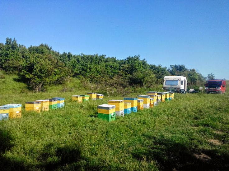 TRANSPORT MARFA  CONSTANTA 0768499072  0730754382: Transport Marfa Constanta  1,2lei/km, telefon 0768...