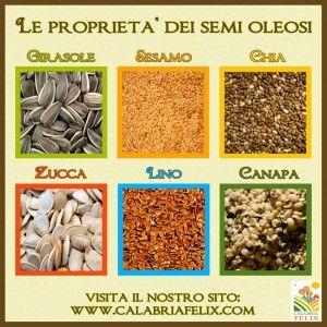 """Le grandi proprietà dei semi oleosi """"benessere"""""""