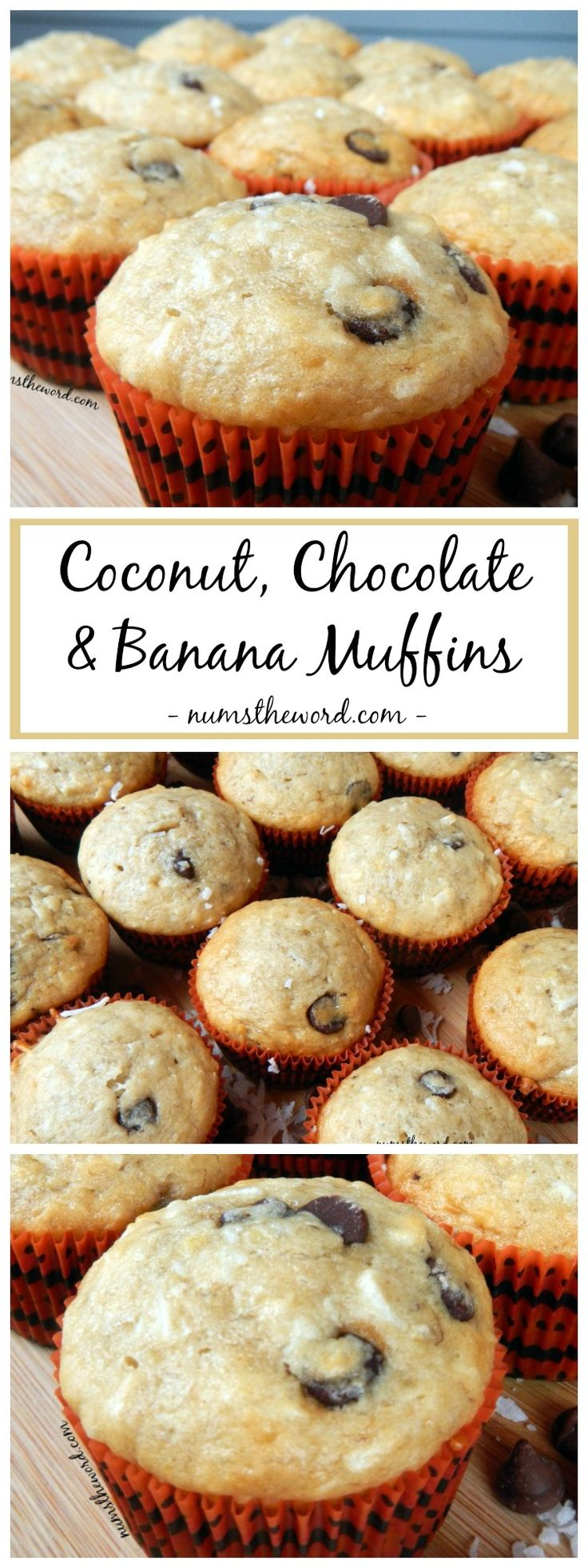 These Coconut, Chocolate & Banana muffins are technically for breakfast, but taste like dessert. Easy, delicious and my all time favorite muffin!