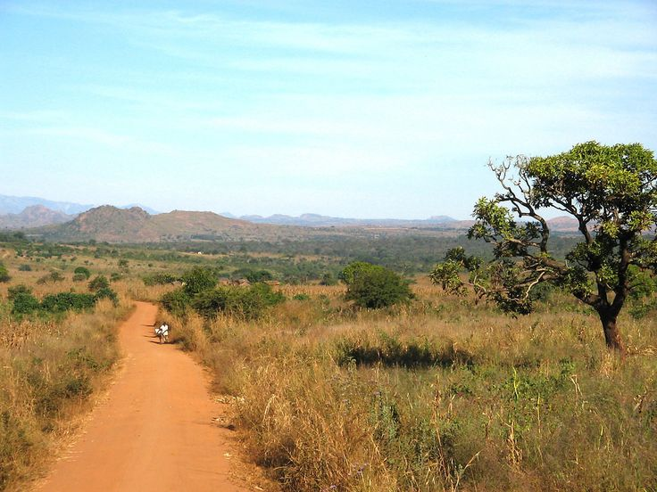 A view of the Malawian landscape, outside of Lilongwe, Malawi, Africa