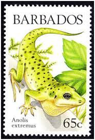 rainforest animal postage stamps - Google Search