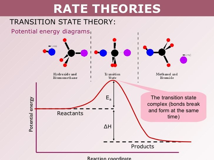 Image Result For Transition State Activated Complex Potential