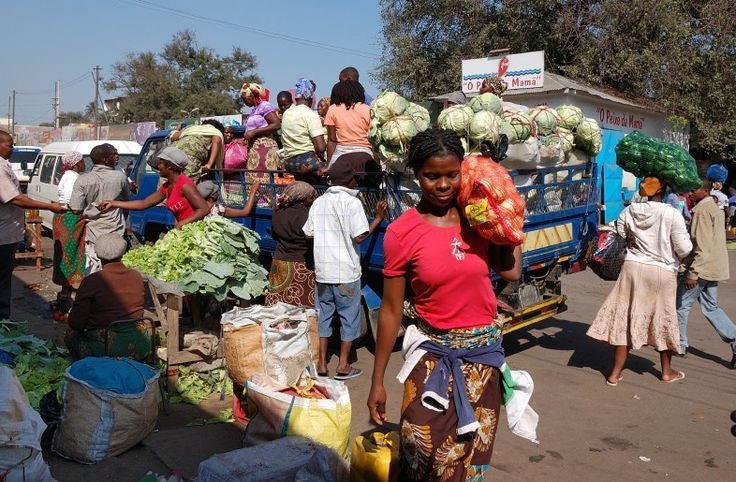 Mozambique Day Experiences: City & Seafood