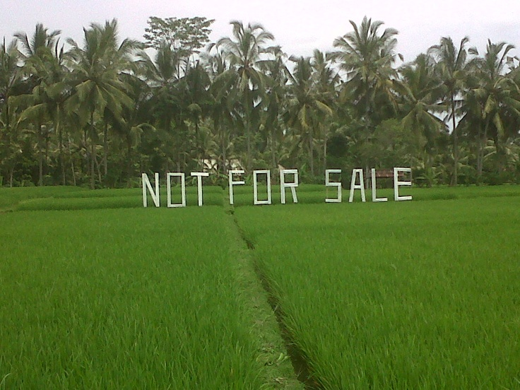 this land is NOT FOR SALE, ubud bali