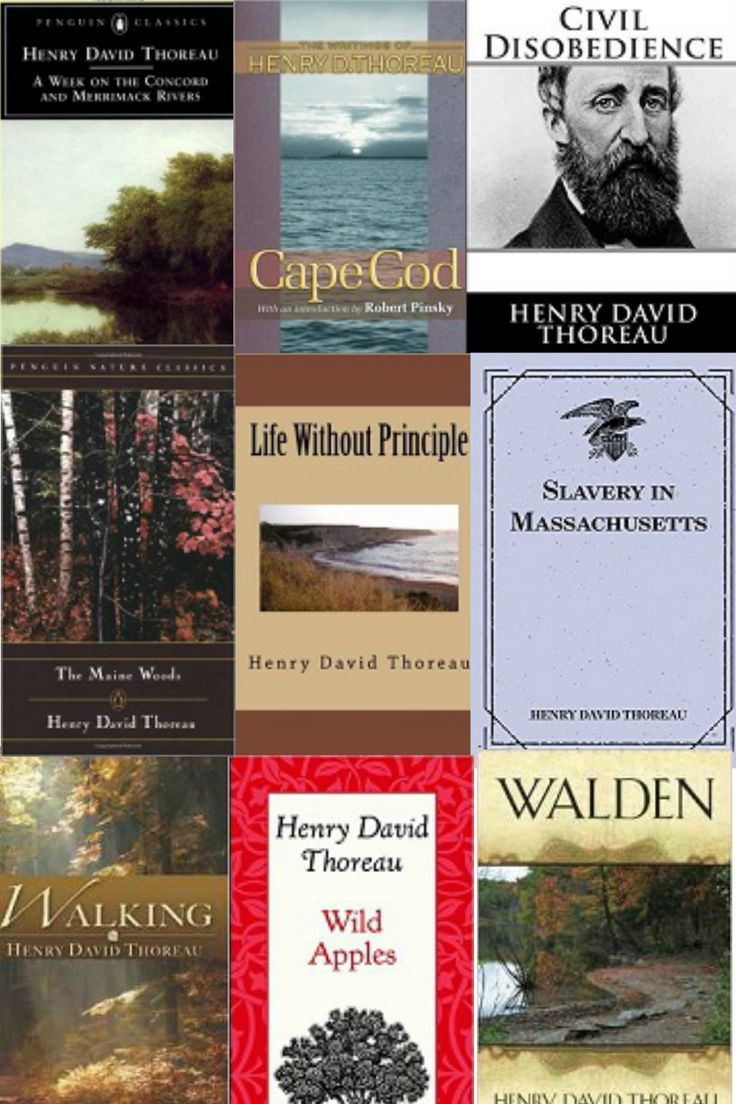 essay on thoreau and emerson Comparing ralph waldo emerson and henry david thoreau essay emerson gives reasons as to why most people conform to society and try to be the same.