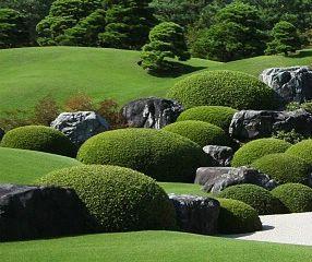 Japanese Gardens: Garden Elements Manicured shrubs at Adachi Museum of Art
