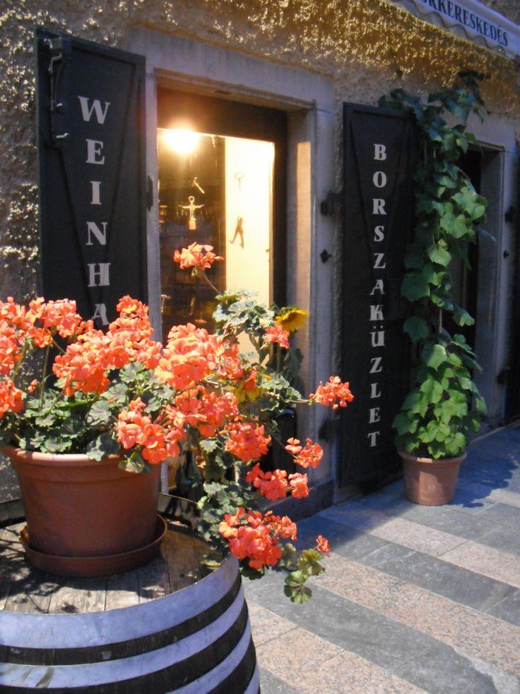 Wineshop in Keszthely, Hungary