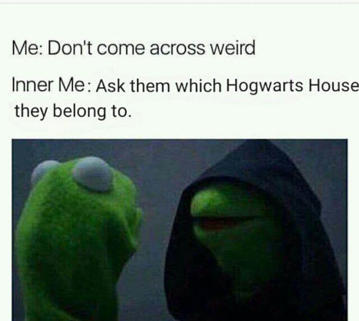 afc605b77d3650468117027081122593 which hogwarts house mbti hogwarts houses best 25 funny kermit memes ideas on pinterest frog meme,Evil Kermit Meme Maker