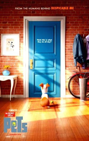 Come On Download Sexy The Secret Life of Pets Premium CineMagz RedTube The Secret Life of Pets WATCH The Secret Life of Pets UltraHD 4K Filem Voir The Secret Life of Pets Online Full HD Movies #TelkomVision #FREE #Cinemas This is Complete