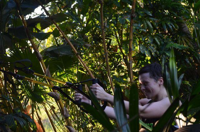 Training with a TRX in the tropics #fitnessmotivation http://www.sharingbali.com/retreats/