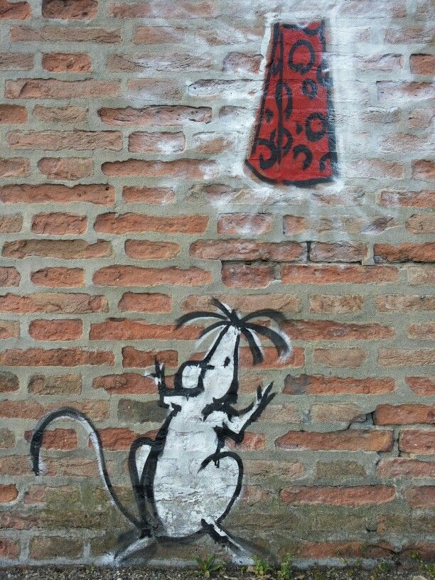 Street art Bologna - #findingbologna