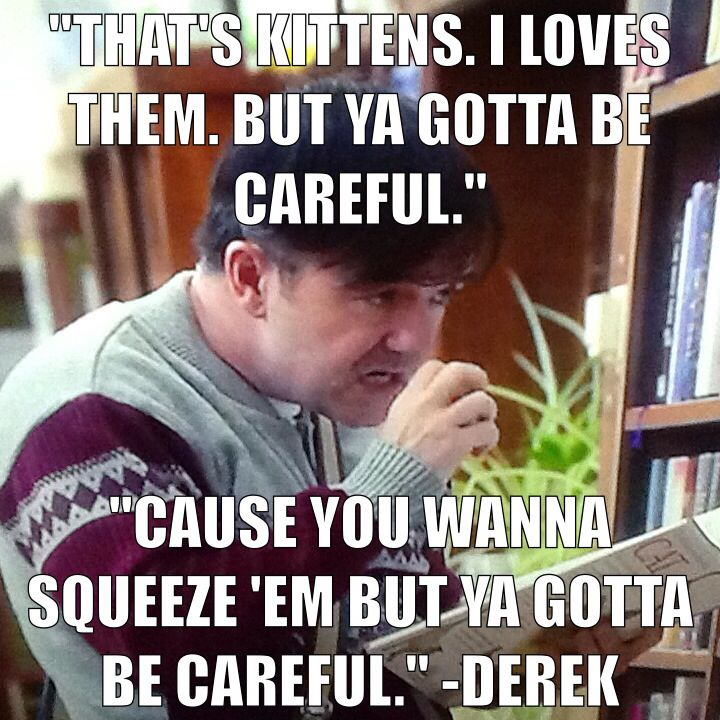 Derek (Ricky Gervais) on cats