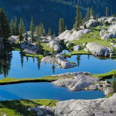 El imponente parque de las Montañas Rocosas, un santuario natural con un siglo de historia