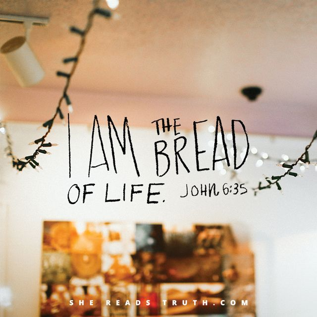 """The true miracle of the Bread of Life is that Jesus is all we need. All that other stuff we are hoping will fill our bellies up? It is nothing compared to Christ Himself.  May we grow to want only one thing and passionately learn to pray, """"Give us Jesus, always!"""""""