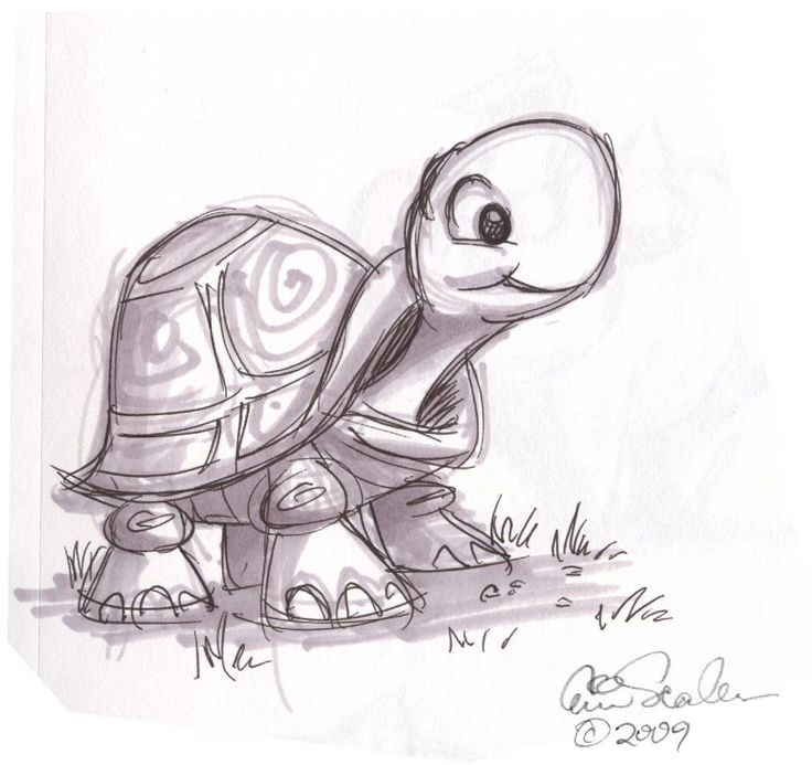 cartoon animal sketch Cute Turtle