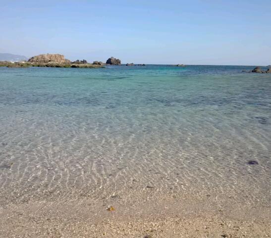 爪木崎(静岡県下田市)の海