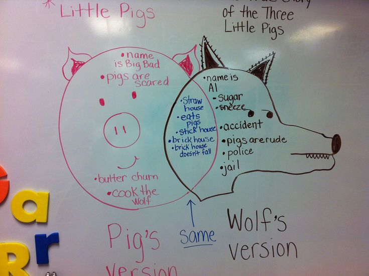 Venn Diagram I use w/my kindergartners to compare/contrast 'The 3 Little Pigs' and 'The True Story of the 3 Little Pigs'.