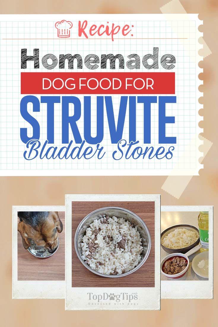 Recipe Homemade Dog Food For Struvite Bladder Stones Dog Food