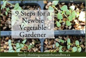 How to Start a Beginner Vegetable Garden - Thinking Outside the Sandbox Family
