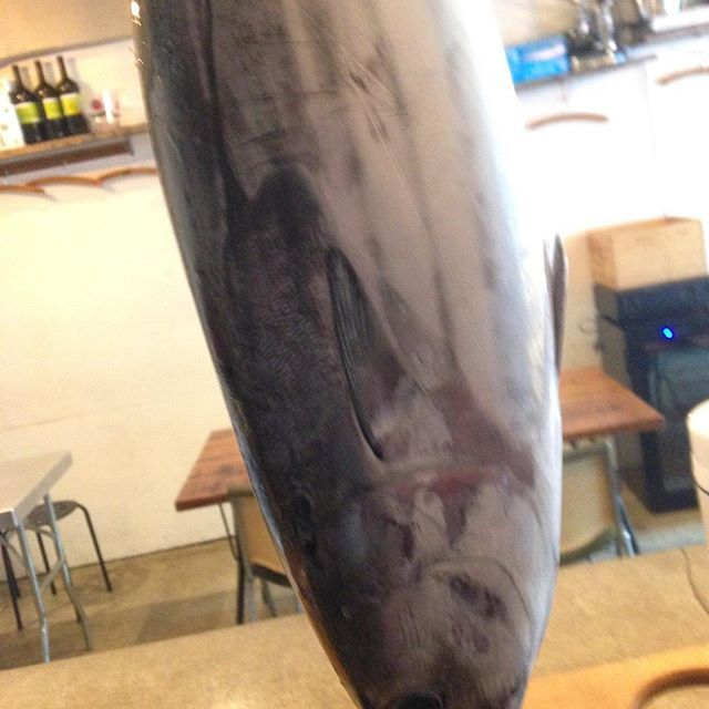 皆様こんにちわ 中目黒にあるダイニング stove(ストーブ)です!  本日22時半から貸切いただいておりますー! ありがたや〜  その前はカウンターはあいておりますー!  それでは!  #とったどー #日本#Japan #東京 #tokyo #中目黒 #Nakameguro #ダイニング #dining #居酒屋 #izakaya #バー #bar #肉 #meet #魚 #fish #酒 #sake #日本酒 #nihonshu #kale #ケール #vegetable #野菜 #organic #オーガニック#スタッフ募集中 # #beauty #amazing 【団体様の宴会、各種パーティーのご予約受付中〜】 忘年会、歓送迎会、貸切パーティー、女子会、結婚式の二次会、3次会など、ご利用シーンやお好み、ご予算に合わせてできる限り対応致しますので、お気軽にお問い合わせください!