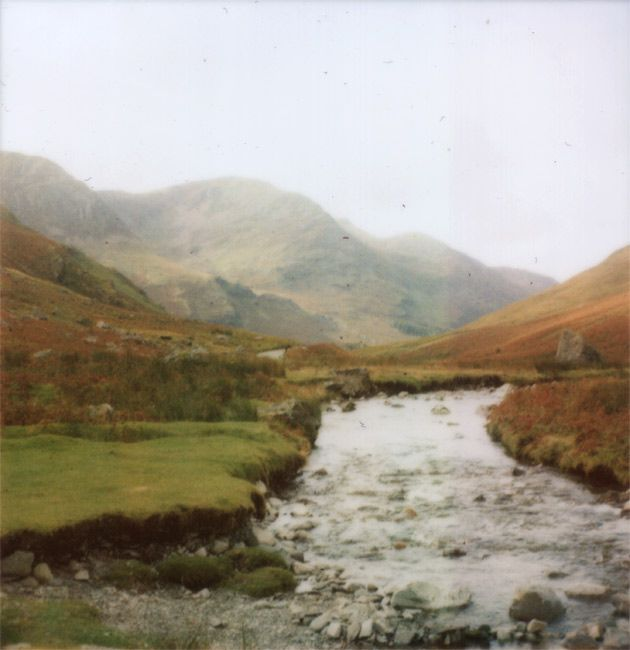 Polaroid Stream