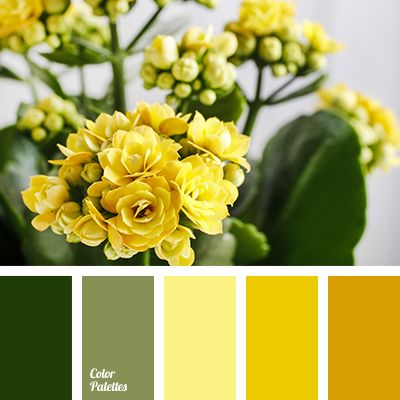 Color Palette #2872 | Color Palette Ideas | Bloglovin'