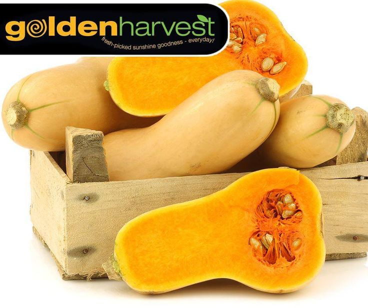 #WellnessWednesday: One cup of butternut squash contains almost 7 grams of fiber, which can help prevent constipation and maintain a healthy digestive tract by supporting healthy bacteria in the gut. Pop in at #GoldenHarvest for this healthy vegetable.