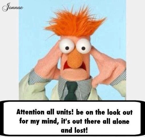 16 best beaker images on pinterest funny images funny - Beaker muppets quotes ...