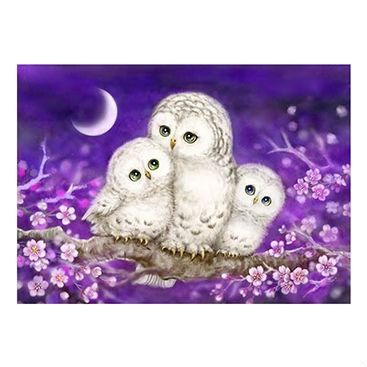 Family of owls in a painting with cherry blossom flowers set at night with the moon glowing.