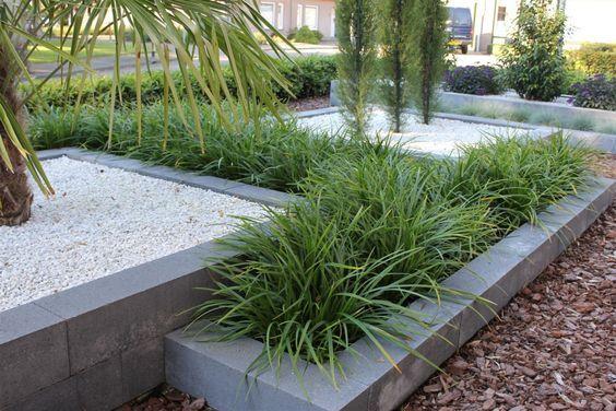 Siergrassen zijn een goede aanvulling in een strakke, moderne tuin.