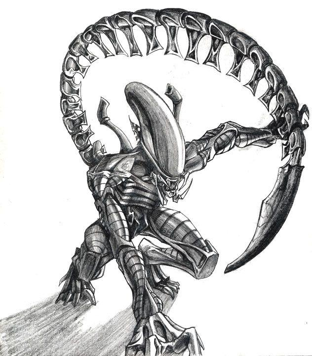 Mejores 1056 imágenes de alien vs predator♤♧♤ en Pinterest ...