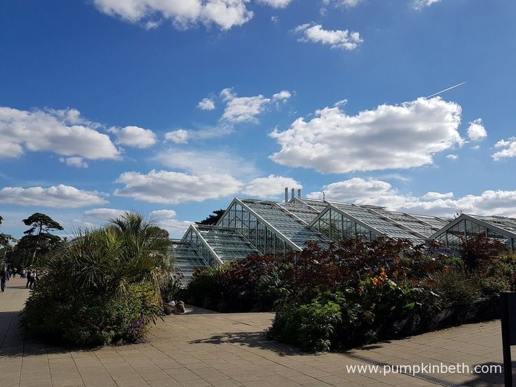 The Princess of Wales Conservatory at the Royal Botanic Gardens, Kew is a fabulous place to visit. Inside this modern, energy efficient glasshouse, ten different climatic zones are recreated, so visitors can see plants from Asia, America and other countries.