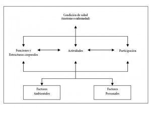 La CIF: el marco conceptual de referencia para la Fisioterapia Pediátrica. Puedes saber más en    http://efisiopediatric.com/conociendo-y-entendiendo-la-cif/