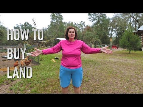 1 Way Poor People Can Buy Land With No Money - Homestead Survival Site