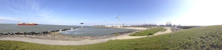 Panorama with a view over the 2nd Maasvlakte with cargo ships and harbor sight