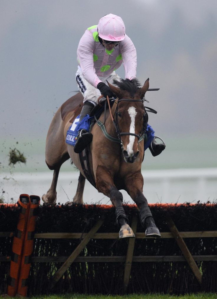 27 Best Cheltenham Gold Cup Images On Pinterest Gold Cup