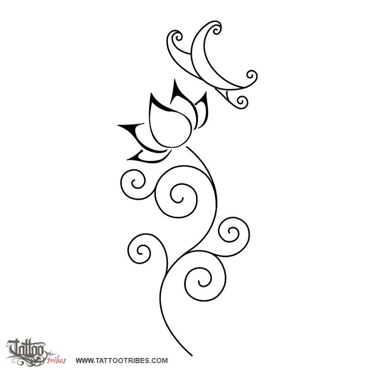 lotus flower, butterfly, swirls, perfection, overcoming adversities, beauty, freedom