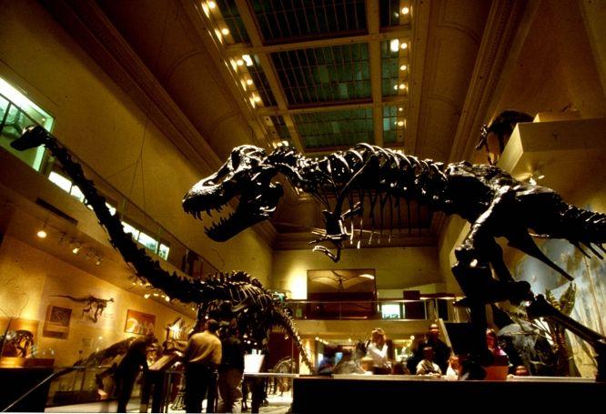 Foyer Museum Washington Dc : Best images about washington dc on pinterest thomas