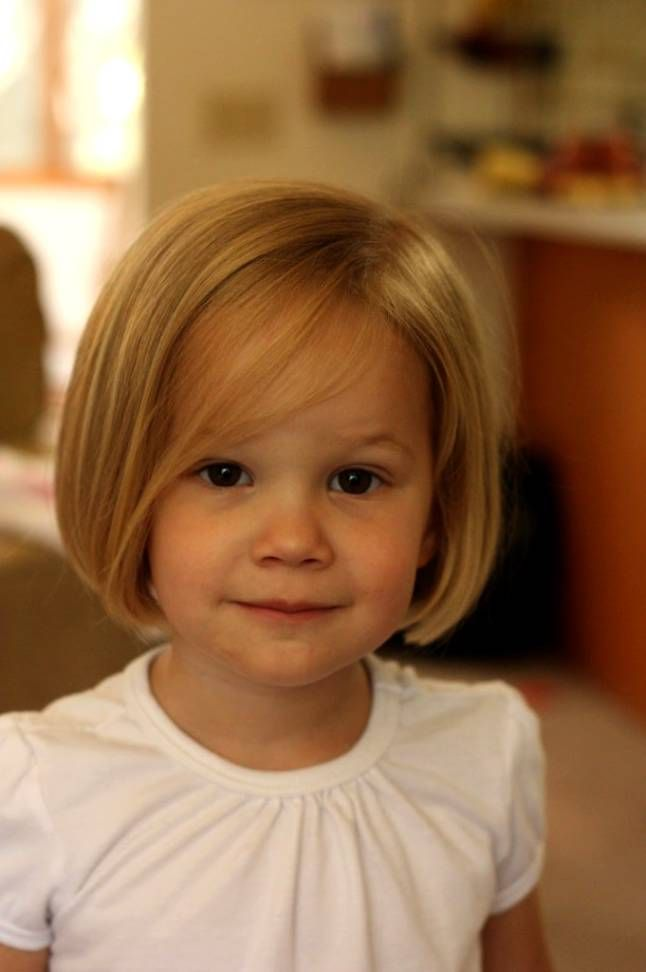 Incredible 1000 Ideas About Toddler Girl Haircuts On Pinterest Girl Hairstyles For Women Draintrainus