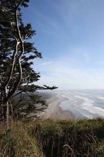 17 Best Images About Washington S Beach On Pinterest