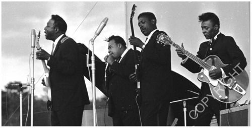 Muddy at Newport - with James Cotton, Andrew Stephenson and PeeWee Madison