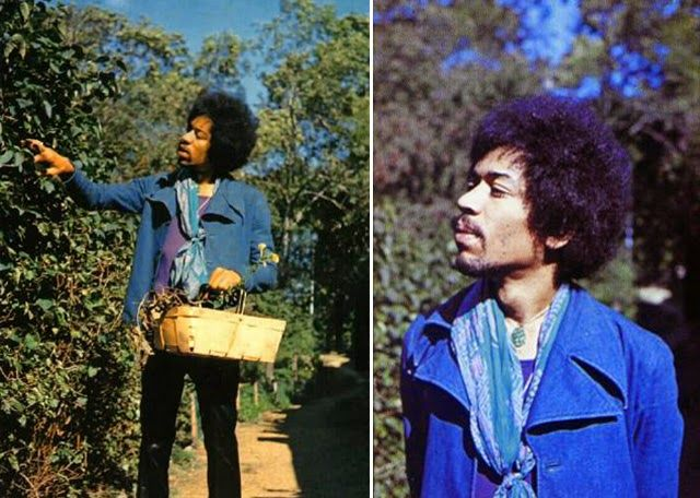 The Last Photos Of Jimi Hendrix Alive, By Monika Dannemann