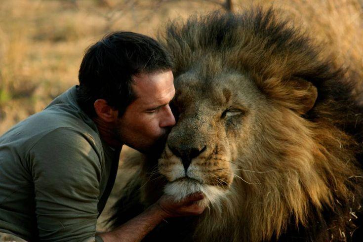 """Chamar o sul-africano Kevin Richardson de """"domador de feras"""" seria uma incoerência: ele se tornou conhecido justamente por se tornar """"amigo"""" de leões, guepardos e outros grandes felinos, não por dominá-los com agressão ou por lhes ensinar truques, como se faria num circo com animais"""