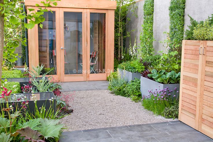 Modern small space Vegetable Garden, with raised beds, patio, Angelica herbs, chives, cabbage, climbing beans, house, fence, reflecting pools, flowers and perennials, red letuuce, small garden design in urban city setting with privacy walls and climbing plants for vertical gardening, gingko tree, raised water gardens, shed with plants growing on roof