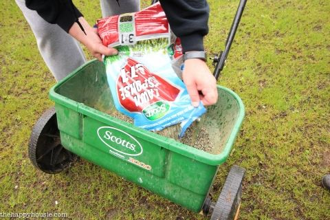 How we transformed our weak, patchy, yellow, winter-damaged lawn in one simple step using Scotts Lawn Response 9-1-1; a fantastic 3 in 1 solution!