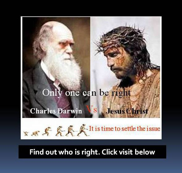 Find out now Who Is Right. Darwin or Christ? Click here. The Gospel, Christianity beliefs, Christianity facts, Christianity holidays, Christianity and Islam, Christianity afterlife, Heaven and Hell, Judgement Day, Prayer, Family prayer, Faith, Evolution definition, evolutionary theory, evolution of man, evolution theory, evolution articles,  evolution by natural selection, Creation, creationism, God, Jesus Christ,
